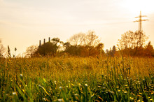 Dreamy Field On The Sunrise In The City Of Bad Oeynhausen
