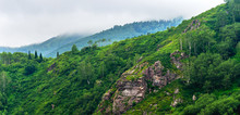 Panorama Of Mountain Ridge Of Mixed Forest, Rock Outcrops On A Misty Summer Morning With Clouds Flowing Low Through The Peaks. Altai Mountains, Kazakhstan.