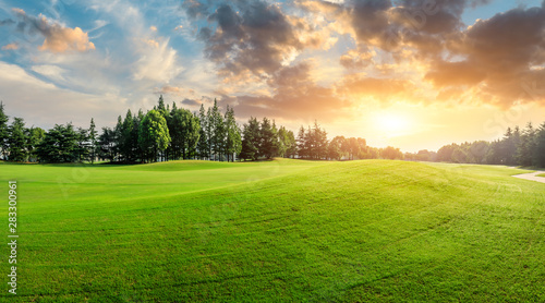 Obraz Green grass and forest with beautiful clouds at sunset - fototapety do salonu