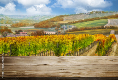 Foto auf Gartenposter Honig Brown wood table in autumn vineyard landscape with empty copy space on the table for product display mockup. Winery and wine tasting concept.