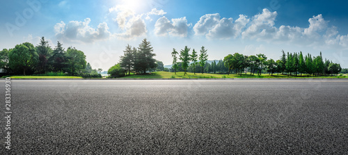 Fototapeta Country asphalt road and green woods nature landscape in summer obraz