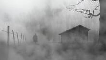 Foggy Day In Walking Man