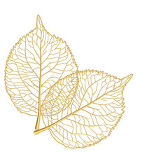Leaf Isolated. Vector Illustra...