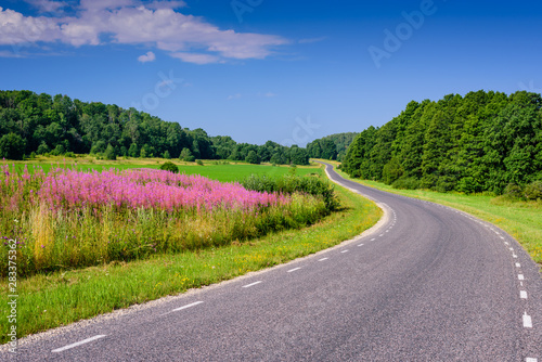 Foto op Aluminium Lavendel Beautiful asphalt road with flowers and trees in the background. Typical road in Estonia.