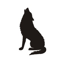 The Wolf Howls