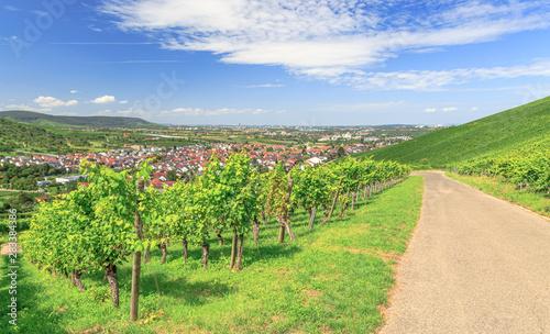Hure aus Weinstadt