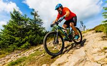 Mountain Biker Riding On Bike ...