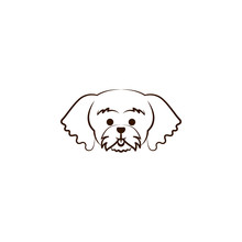 Maltese Icon. One Of The Dog B...