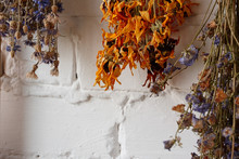 Close-up Of Bouquets Of Dried ...