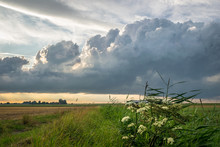 Developing Storm Clouds Over T...