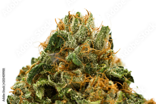 Photo Fibers and crystals on a cannabis bud