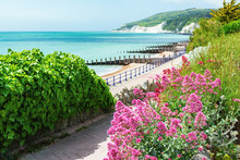 Walk To Holywell Beach In Eastbourne, East Sussex, England, View Of The Sea, Cliffs, Groynes, Selective Focus