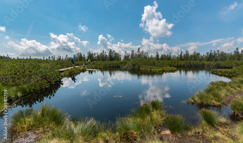 Clouds reflecting in the Lovrenc lakes (Lovrenšla jezera) in the mountain marshl Fototapeta