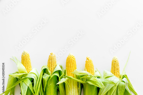 Fotomural  Corn on cobs on white background top view copyspace