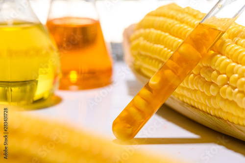 the natural product extract, oil and biofuel solution, in the chemistry laborato Canvas Print