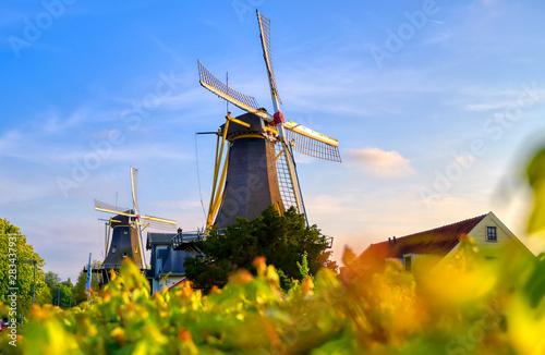 Historic windmills located in Kralingen Lake in Rotterdam, the Netherlands.