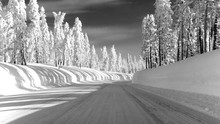 Frozen Road Highway 88 Towards Carson Pass Featuring A 5-feet Tall Wall Of Snow
