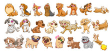 Dog Vector Set Graphic Clipart...