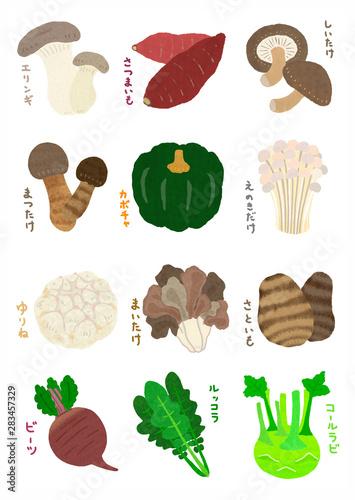 秋野菜 Wallpaper Mural
