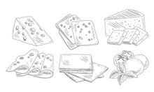 Hand Drawn Different Type Of Cheese Set, Organic Dairy Product, Edam, Maasdam, Mozzarella Cheese With Basil Leaves, Cut Sliced Cheese Assortment Vector Illustration