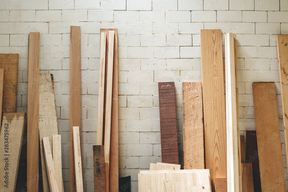 Different species of wood, Stack of different textures and colors wood on the white brick wall, close up, background - obrazy, fototapety, plakaty