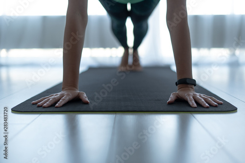 Fotografia  Young sporty woman standing in plank pose on fitness mat