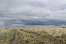 Steppe Road Going Into The Sto...