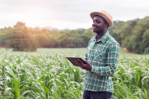Leinwand Poster African Farmer stand in the green farm with holding tablet