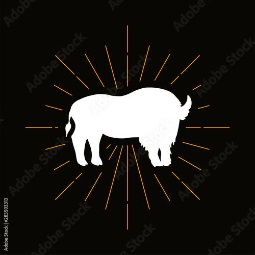 Fényképezés  Retro wild buffalo silhouette