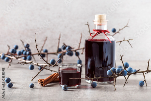 Vászonkép Homemade sloe berry alcohol drink, berries liqueur