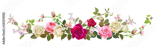 Fototapeta Panoramic view: bouquet of roses, spring blossom. Horizontal border: red, pink, white flowers, buds, green leaves, white background. Digital draw illustration in watercolor style, vintage, vector obraz