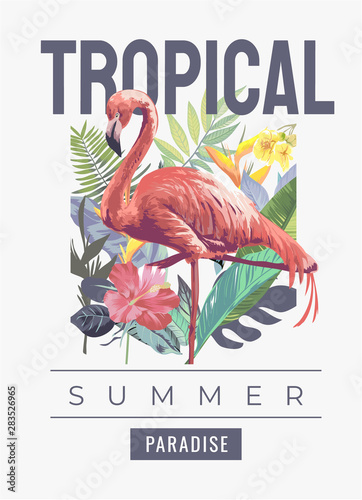 tropical slogan with flamingo in the wild