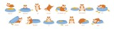 Fototapeta Fototapety na ścianę do pokoju dziecięcego - Set of hamster demonstrating English prepositions of place and movement. Bundle of funny animal with feeder and words demonstration. Educational flat cartoon vector illustration for language learning.