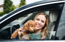 Young Woman Driver With A Dog Sitting In Car, Looking Out Of Window.