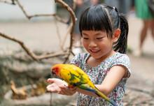 Child Is Feeding A Bird