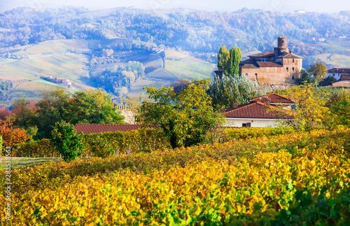 Golden vineyards and castle of Piedmont. wine region of Italy