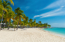 Caravelle Beach In Guadeloupe
