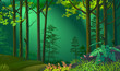 Moonlight illuminating a beautiful forest