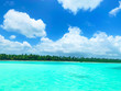 canvas print picture - Clear Tropical Water in Paradise with blue sky