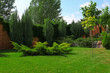Beautiful green garden with different plants on sunny day