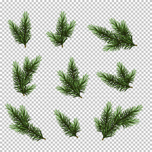 Set Christmas Tree Isolated On...