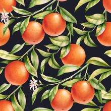 Oranges On A Branch Seamless Background. Vintage Watercolor Pattern Of Citrus Leaves, Fruit And Blossoms.