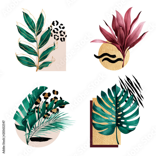 Fototapeta Set of abstract compositions with tropical plants, golden outline, geometric figures and animal pattern. obraz na płótnie