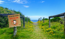 Device Free Zone Sign On Post With Path Leading To Beach And Sea, Family Fun And Bonding In A Digital Free Zone Concept Illustration
