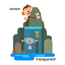 Opposite Transparent And Opaque Vector Illustration