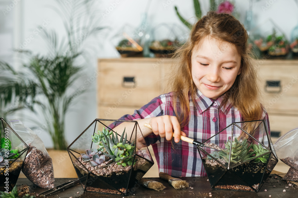 Fototapeta DIY florarium. Home gardening class. Girl enjoying planting succulents in glass geometric vases. Blur interior background.