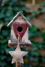 Cute Birdhouse With Star Across Ivy Wall