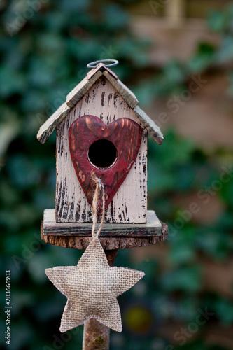 Obraz na plátně Cute Birdhouse With Star Across Ivy Wall