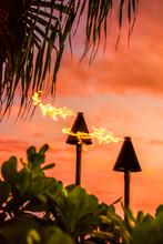 Hawaii Luau Party Maui Fire Ti...