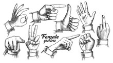 Multiple Female Caucasian Hand...